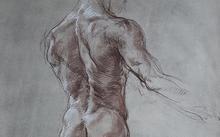 Анфилова Е. / Мужская модель со спины / сепия / 1996