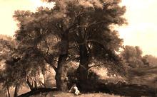 """Селиванов В. / Анфилова Е. / Копия с картины А.К. Саврасова """"Пейзаж с дубами и пастушком"""" / холст / масло / 2010"""